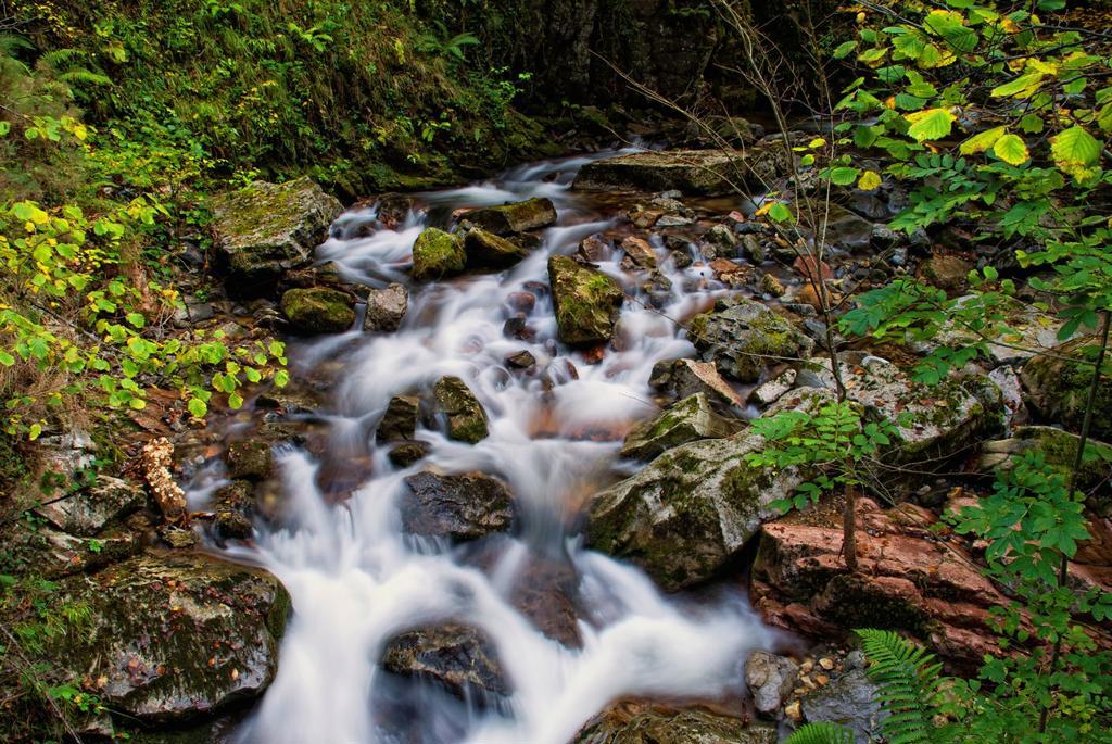 Alba River. Redes Natural Park and Biosphere Reserve. Soto de Agues. Concejo de Sobrescobio. Asturias. Spain. : Stock Photo