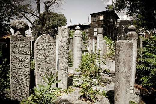 Stock Photo: 1566-865667 graves in a Graveyard  Eyup  Istanbul, Turkey