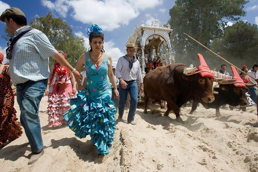 Stock Photo: 1566-867016 Taken during the pilgrimage to El Rocio by the Villamanrique brotherhood, the oldest one wich takes part in this religious festival, the more important one in Andalusia South Western Spain  May 2007