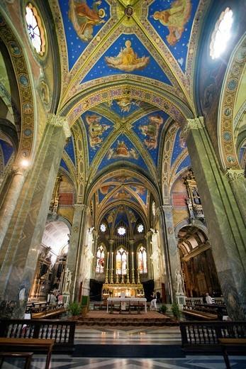 Celing and main nave of Santa Maria Sopra Minerva Basilica, Rome : Stock Photo
