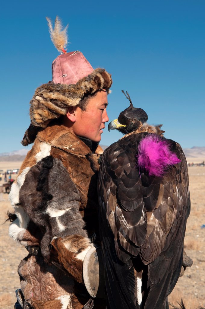 Kazakh eagle hunter and his golden eagle in the Altai Region of Bayan-Ölgii in Western Mongolia : Stock Photo