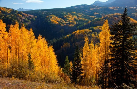 Stock Photo: 1566-874352 Autumn in the Rocky Mountains