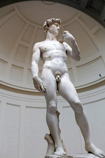 Statue of David by Michelangelo at Accademia Gallery Museum, Florence, Italy : Stock Photo