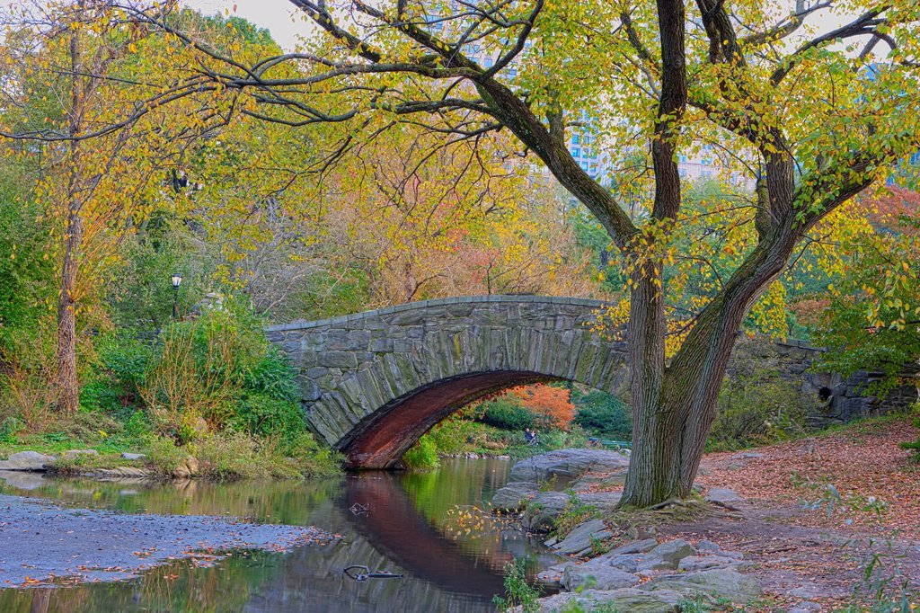 Gapstow Bridge & The Pond, Central Park : Stock Photo