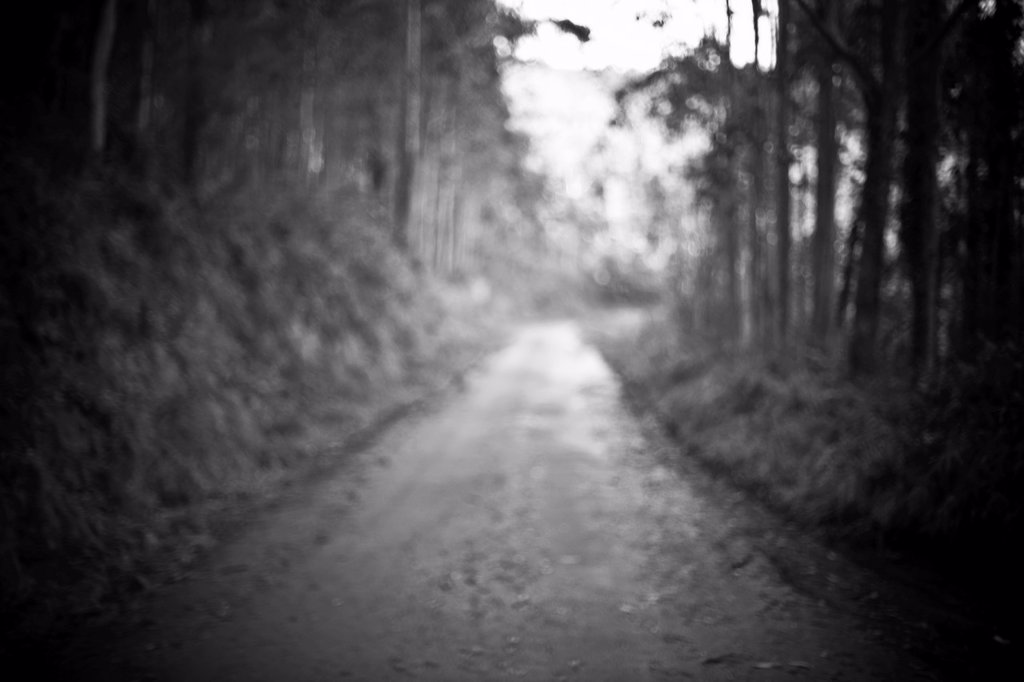 Stock Photo: 1566-881827 Road blur, Galicia, Spain