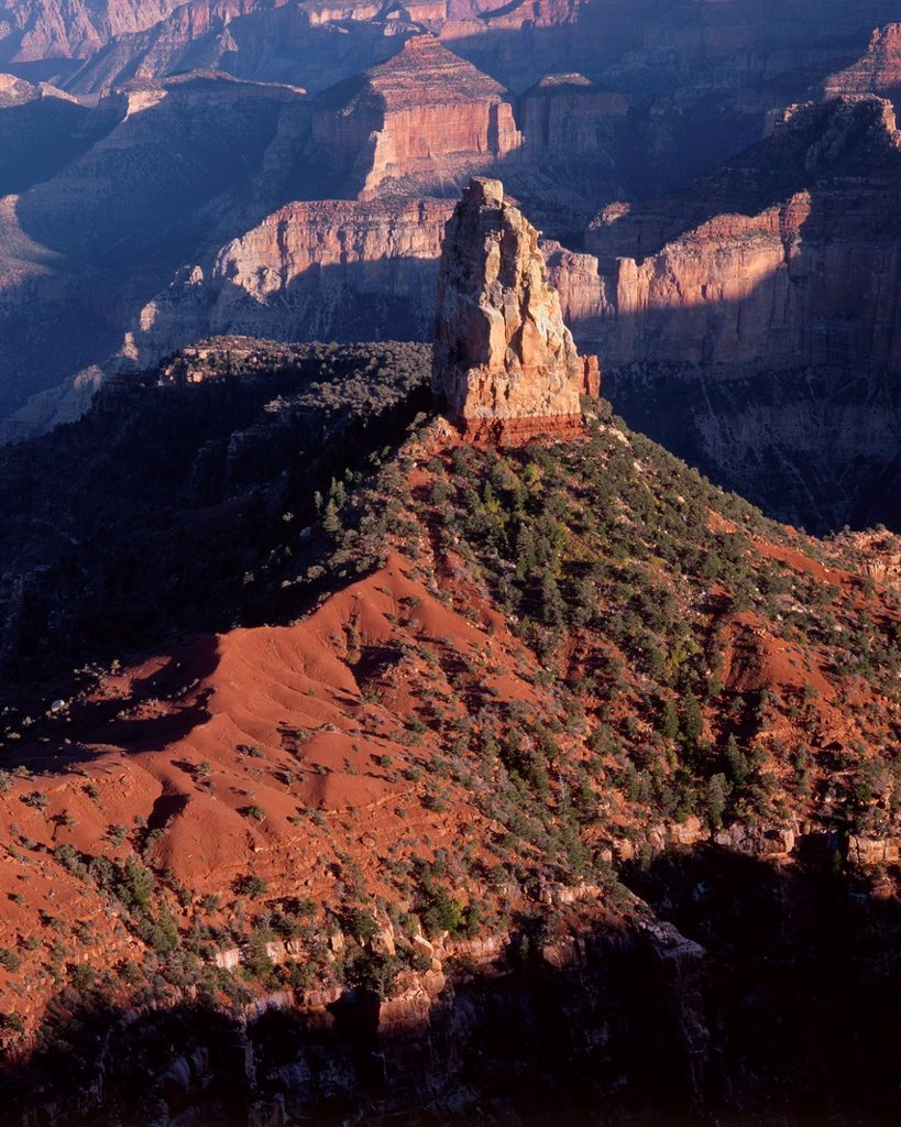 Stock Photo: 1566-885604 Evening light defines Mt Hayden and canyon walls, view south from Point Imperial, North Rim, Grand Canyon National Park, Arizona, USA