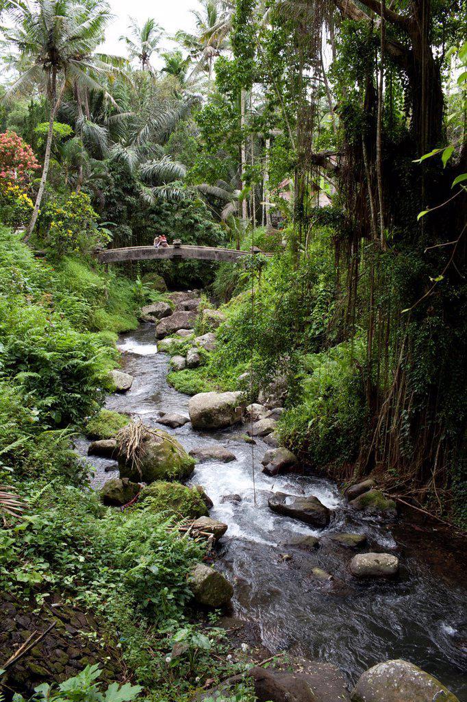 Stock Photo: 1566-885830 Gunung Kawi The Rocky Temple, Tampaksiring, Bali, Indonesia
