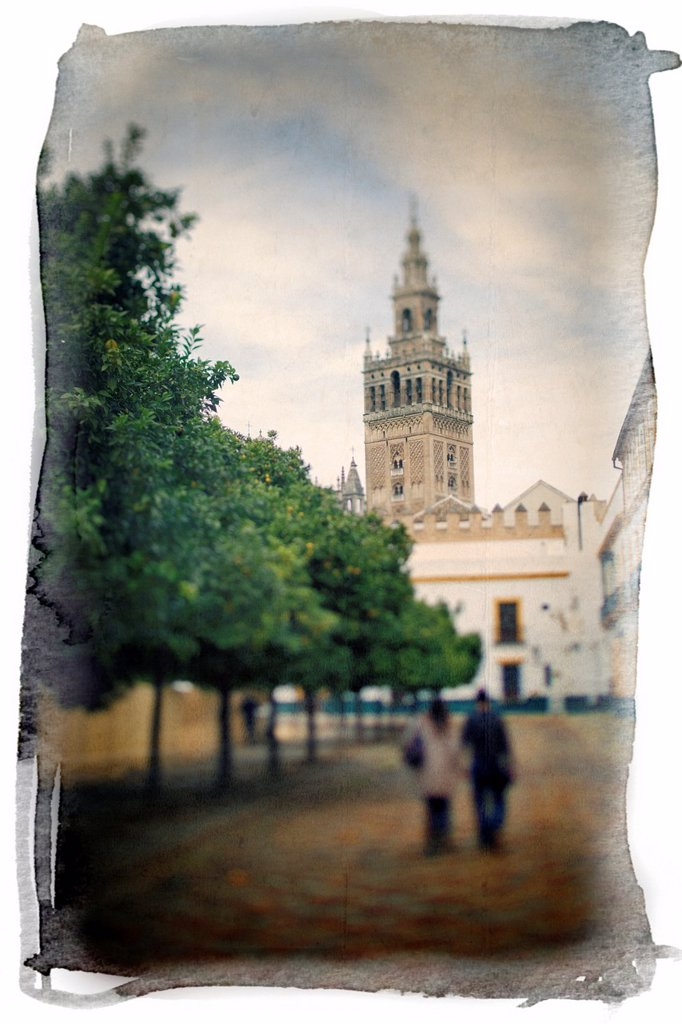 The Giralda Tower as seen from Patio de Banderas square, Seville, Spain  Taken with tilted lens to get shallower depth of field and digitally edited to look like an old print : Stock Photo