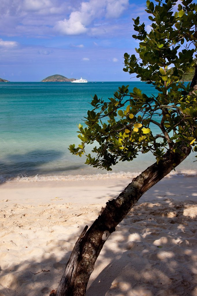 Megan´s Bay Beach, St  Thomas, US Virgin Islands : Stock Photo