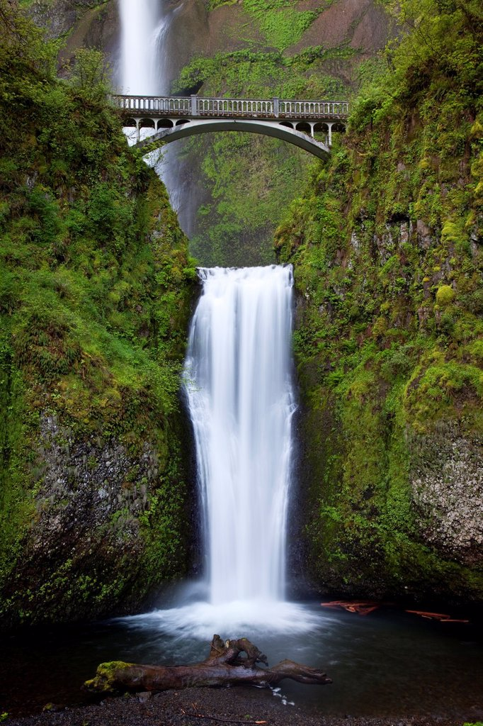 Stock Photo: 1566-887206 Multnomah Falls in the Cascade Mountains of Oregon, USA