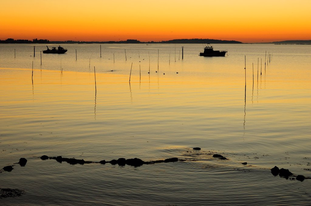 Twilight in Carril, Vilagarcia de Arousa, Galicia, Spain : Stock Photo