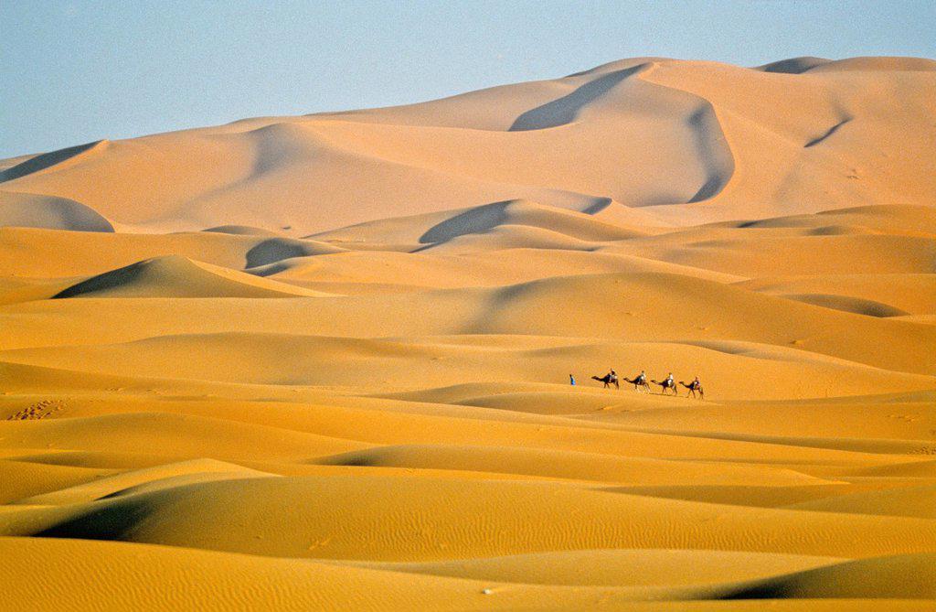 Merzouga, Sahara : Stock Photo