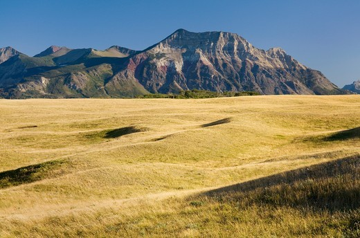 Stock Photo: 1566-894614 Great Plains prairie meeting the Rocky Mountains at Waterton Lakes National Park Alberta Canada