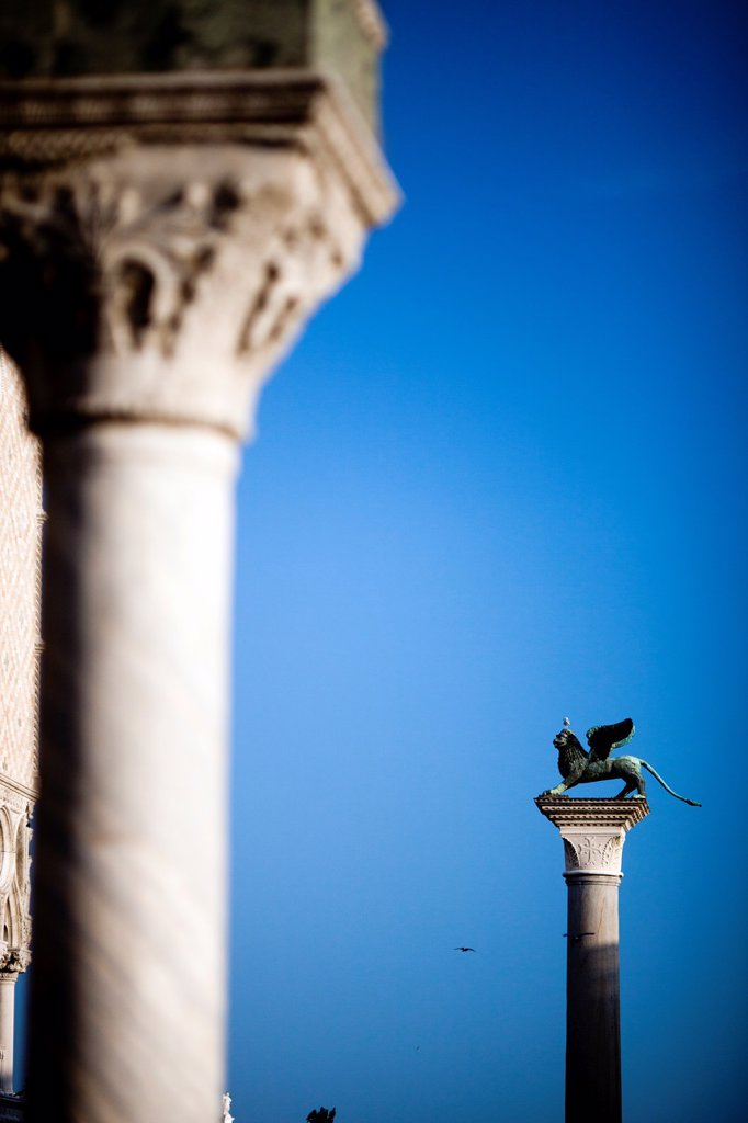 The Piazzetta winged lion background and a column from the Doge´s Palace foreground, Venice, Italy : Stock Photo