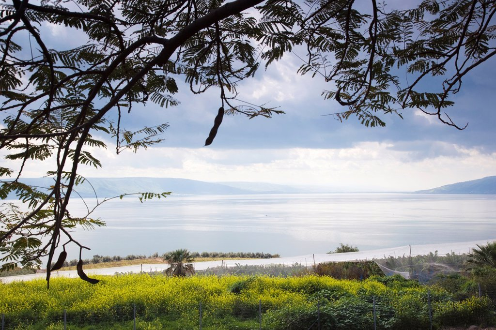 Stock Photo: 1566-895706 Israel, The Galilee, Tabgha, Mount of the Beatitudes, view of Sea of Galilee-Lake Tiberias