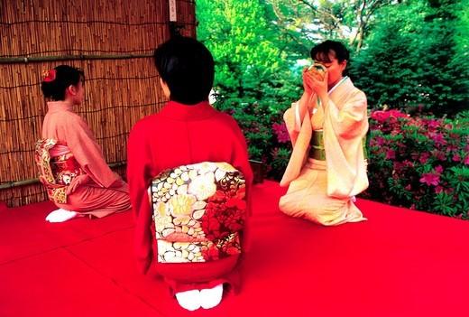 Stock Photo: 1566-896954 Tea Ceremony, Japan, Tokyo, Young ladies in kimono