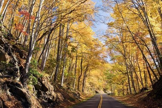 Autumn on the Blue Ridge Parkway, near Asheville, North Carolina USA : Stock Photo