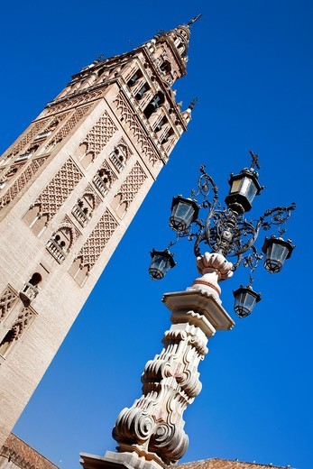 Stock Photo: 1566-901640 Cathedral,Giralda tower from Plaza Virgen de los Reyes,Sevilla,Andalucía,Spain
