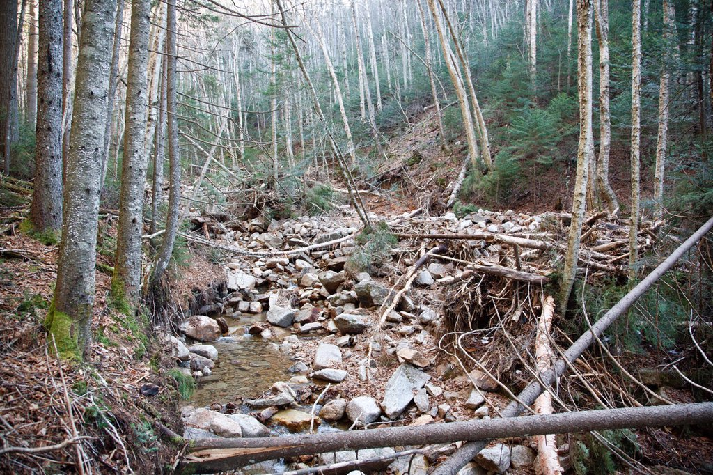 Landslide on the side of the Hancock Mountain Range in the Pemigewasset Wilderness of Lincoln, New Hampshire USA  Heavy rains from Tropical Storm Irene in 2011 caused a old landslide that was in the process of being natural regenerated to slide again  The. Landslide on the side of the Hancock Mountain Range in the Pemigewasset Wilderness of Lincoln, New Hampshire USA  Heavy rains from Tropical Storm Irene in 2011 caused a old landslide that was in the process of being natural regenerated to slid : Stock Photo