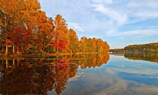 Fall reflections in lake at Seneca Creek State Park. : Stock Photo
