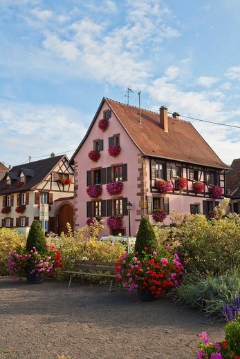 Stock Photo: 1566-910208 Picturesque timbered house in Marlenheim, Alsace, France, Europe