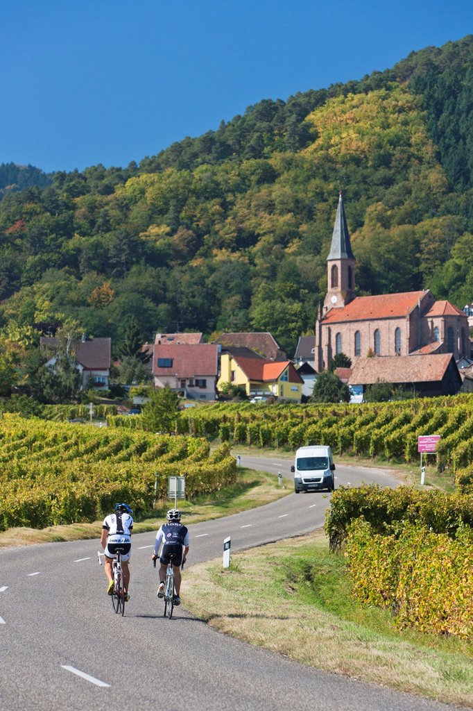 Cyclists on the road towards Husseren-les-Châteaux, Alsace, France, Europe : Stock Photo
