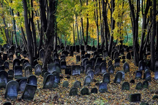 Stock Photo: 1566-911508 Historic Jewish cemetery at Okopowa Street in Warsaw, Poland