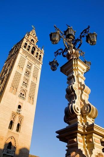 Stock Photo: 1566-913121 Cathedral,Giralda tower from Plaza Virgen de los Reyes,Sevilla,Andalucía,Spain