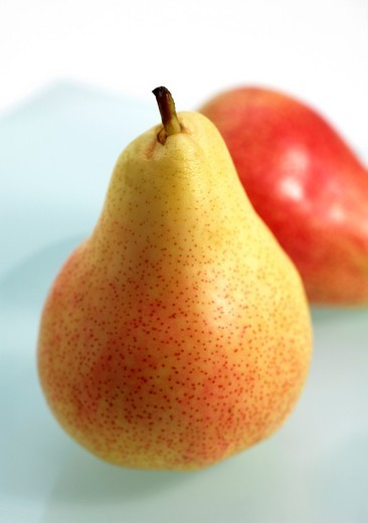 Rosemary Pear, pyrus communis, Fresh Fruits : Stock Photo