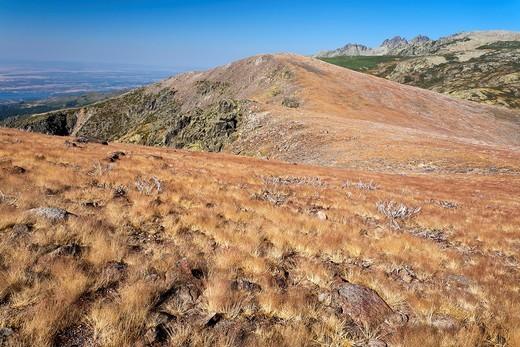 Alto del Pajonal  Sierra de Gredos  Ávila  Castilla León  Spain : Stock Photo