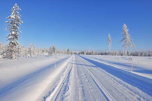 Snow covered road in winter, Kuloharju, Kuusamo, Nordoesterbotten, Pohjois Pohjanmaa, Finland, Suomi : Stock Photo