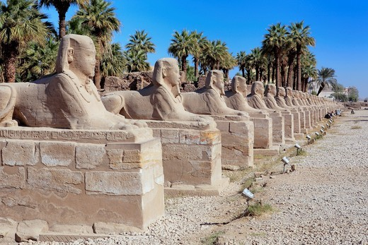 Stock Photo: 1566-916083 Amun-Re temple, Karnak, Egypt