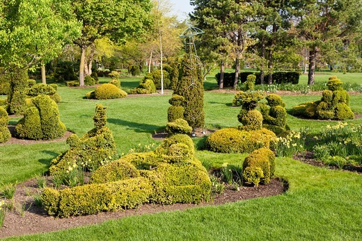 Topiaries in the Old Deaf School Topiary Park in Columbus, Ohio : Stock Photo