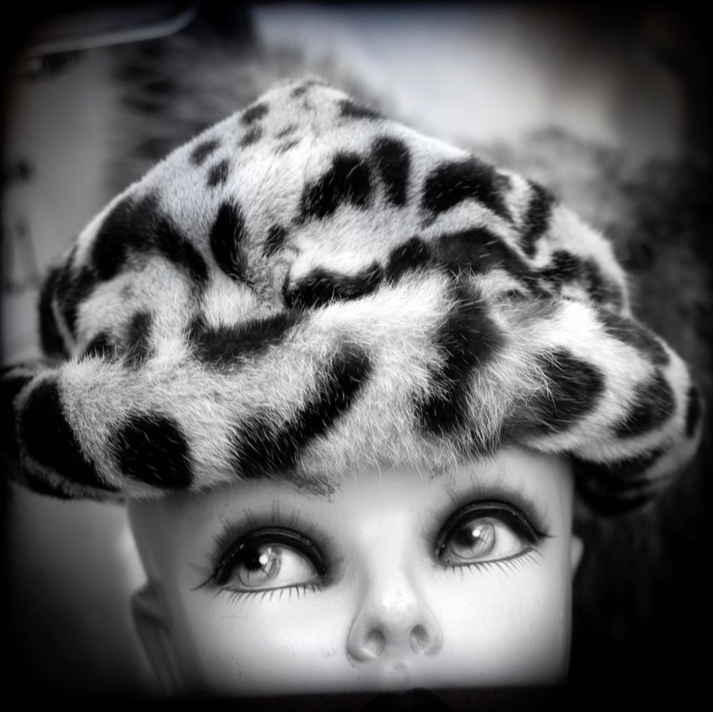 Stock Photo: 1566-918312 photograph of a female mannequin face of a hat with animal print