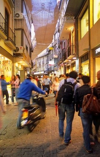 Stock Photo: 1566-919849 Mesones street Shopping street Granada  Andalucia, Spain