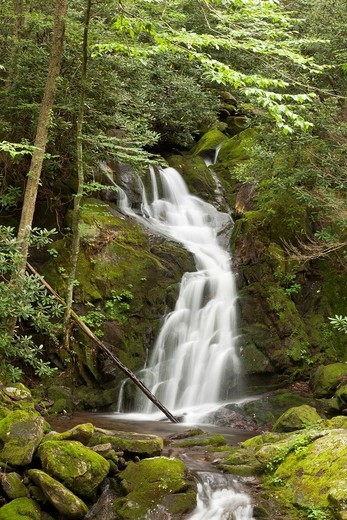 Mouse Creek Falls in summer, Big Creek Trail, Smoky Mountains National Park, North Carolina, United States : Stock Photo
