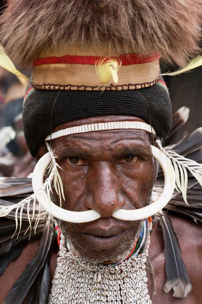 Stock Photo: 1566-921097 Warrior of Dani Tribe, Baliem Valley, West Papua, Indonesia