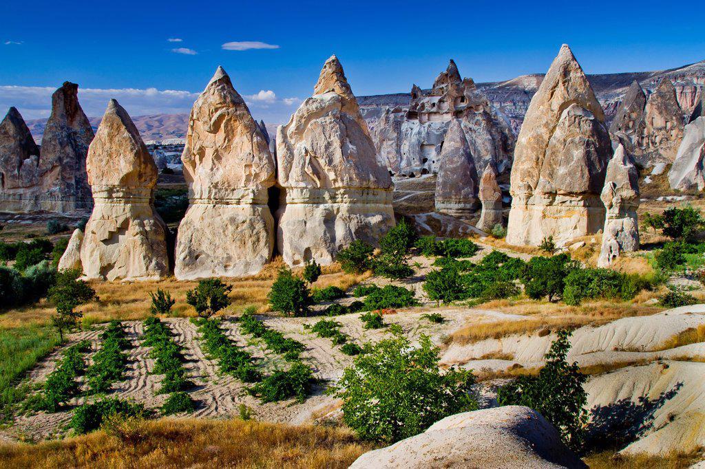 Stock Photo: 1566-923576 Fairy chimneys  Cappadocia Region  Nevsehir province  Turkey