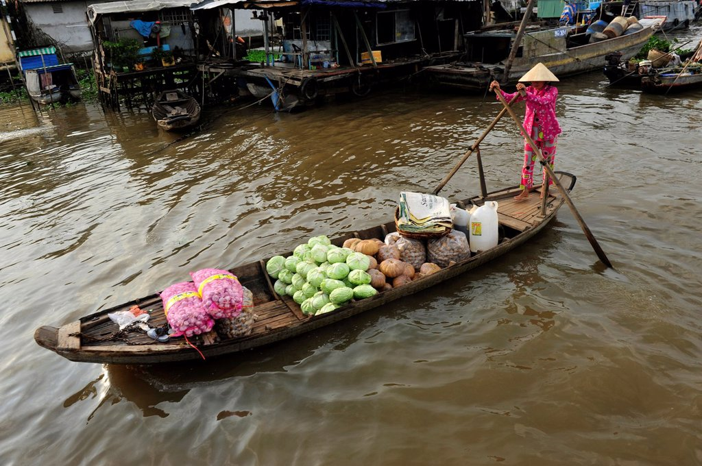 Stock Photo: 1566-923702 Asia,South East Asia,Vietnam,Cai Be floating market in Mekong Delta,South Vietnam