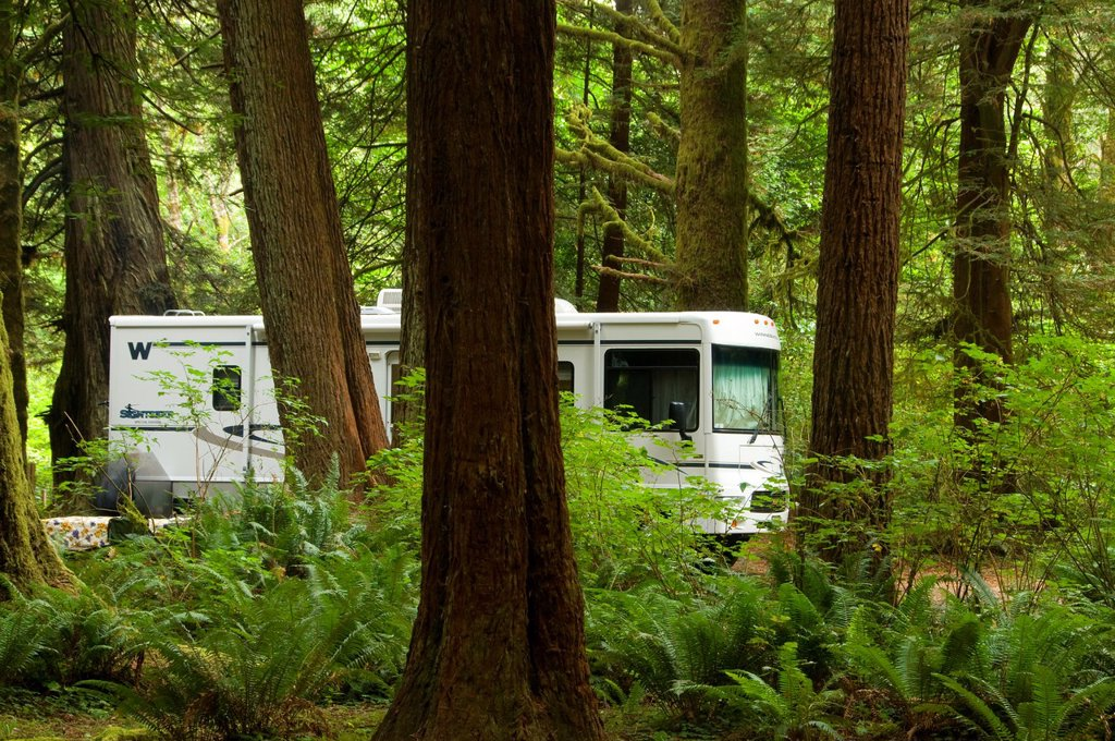 Stock Photo: 1566-926189 Motorhome in campground, Prairie Creek Redwoods State Park, Redwood National Park, California
