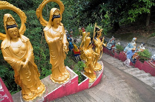 Temple of Ten Thousand Buddhas  Sha Tin  New territories,Hong Kong, China : Stock Photo