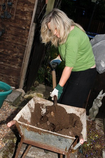 woman using spade to move soil from wheelbarrow to tubs : Stock Photo