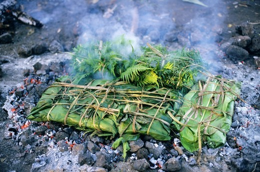 Stock Photo: 1566-930548 A laplap dish wrapped with bananas leaves being cooked on coals, Sulphur Bay, Tanna Island, Vanuatu