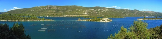 Oyster and mussel farming in Mali Ston Bay, Croatia : Stock Photo
