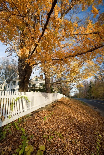 Fall scenic, Connecticut, USA : Stock Photo
