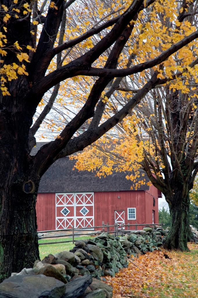 Stock Photo: 1566-936904 Old barn, Ambler Farm, Town of Wilton, CT, USA