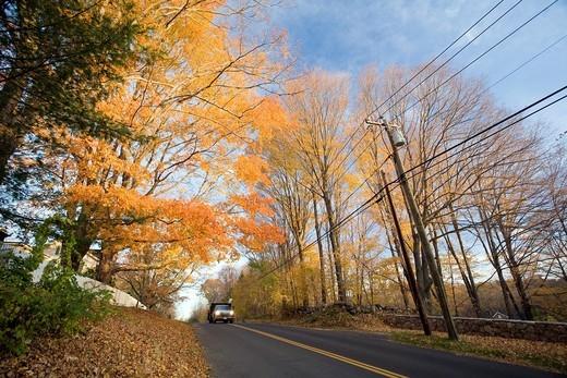 Stock Photo: 1566-941662 Fall landscape, Wilton, Connecticut, USA