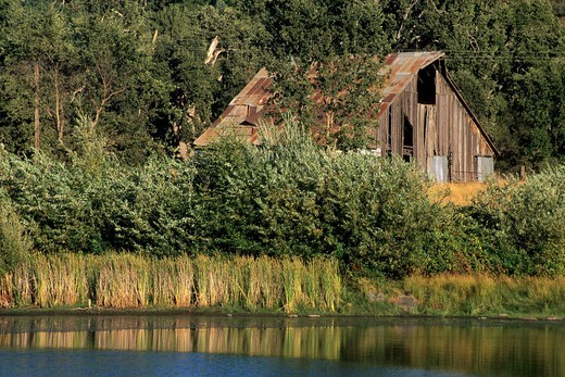 Barn and pond, near Mt  Aukum, El Dorado County, California : Stock Photo