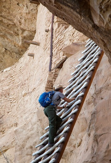 Cortez, Colorado - A park ranger climbs a ladder to enter the Balcony House cliff dwelling at Mesa Verde National Park  The park features cliff dwellings of ancestral Puebloans that are nearly a thousand years old : Stock Photo