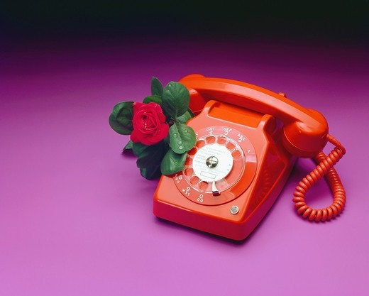Stock Photo: 1566-945681 Retro red telephone with a red rose